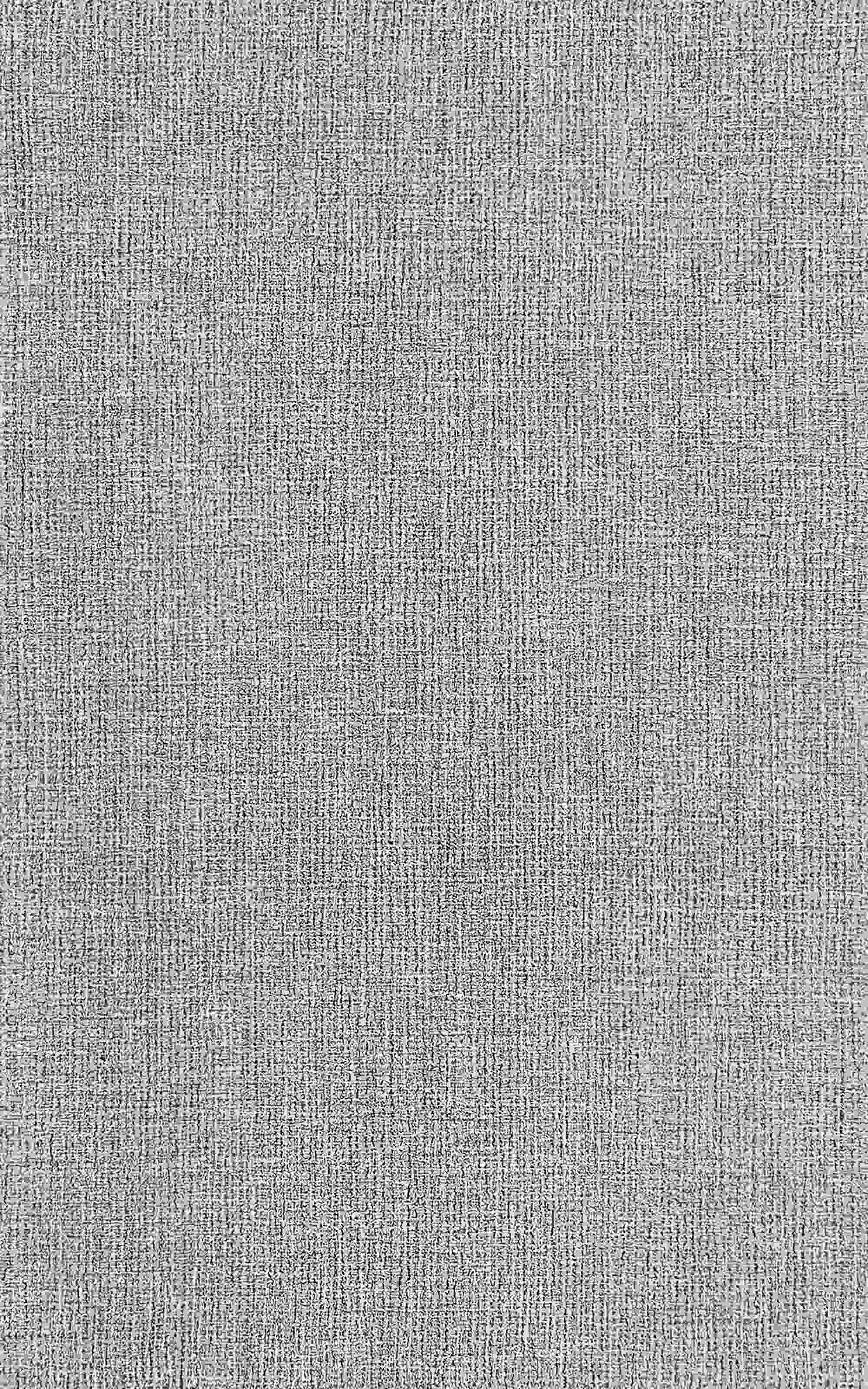 Dynamic Sonoma Light Grey Transitional Rug 2532-190
