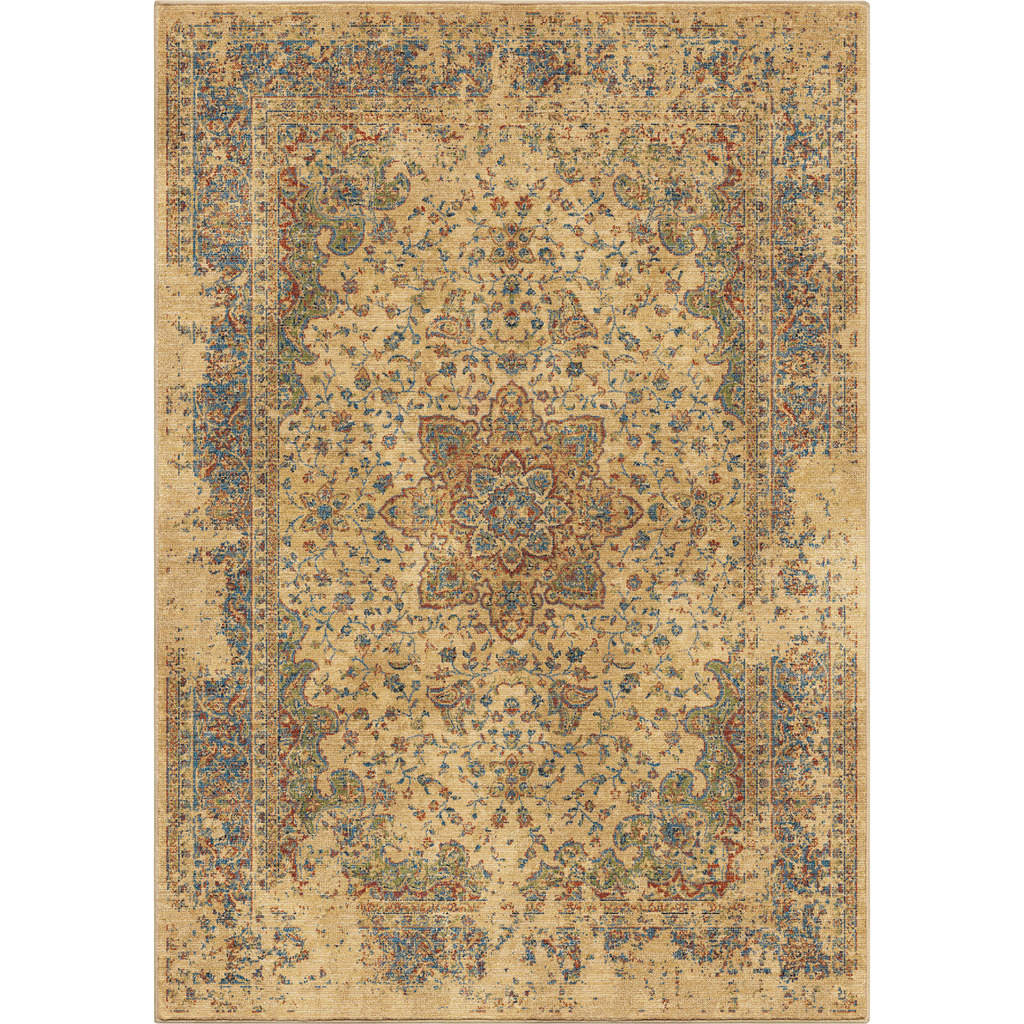 Orian Distressed Regal Bohemian Transitional Rugs